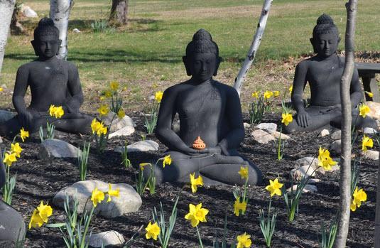 buddha-garden